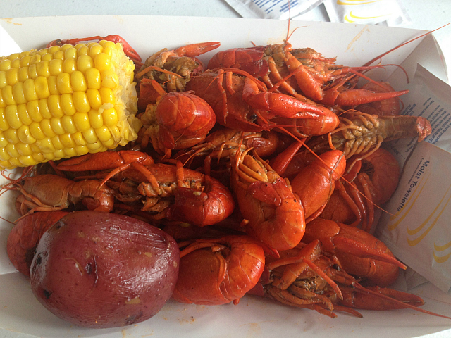 Crawfish - top view