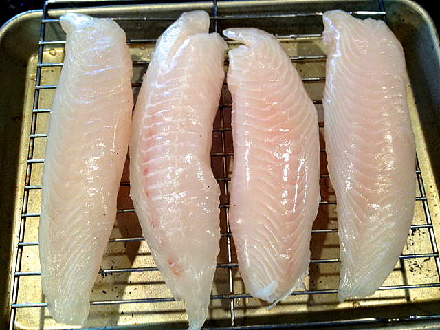 Tilapia-on-a-Rack
