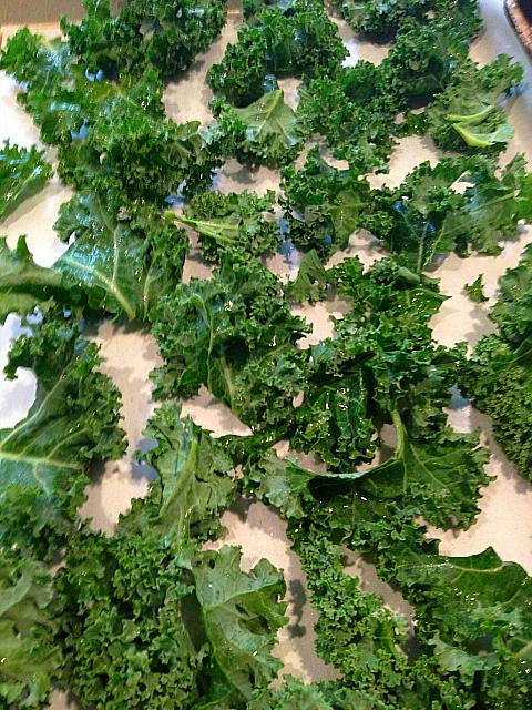 Kale Chips - Cut on Sheet