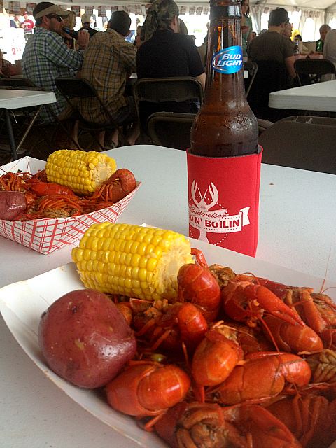 Crawfish - with beer